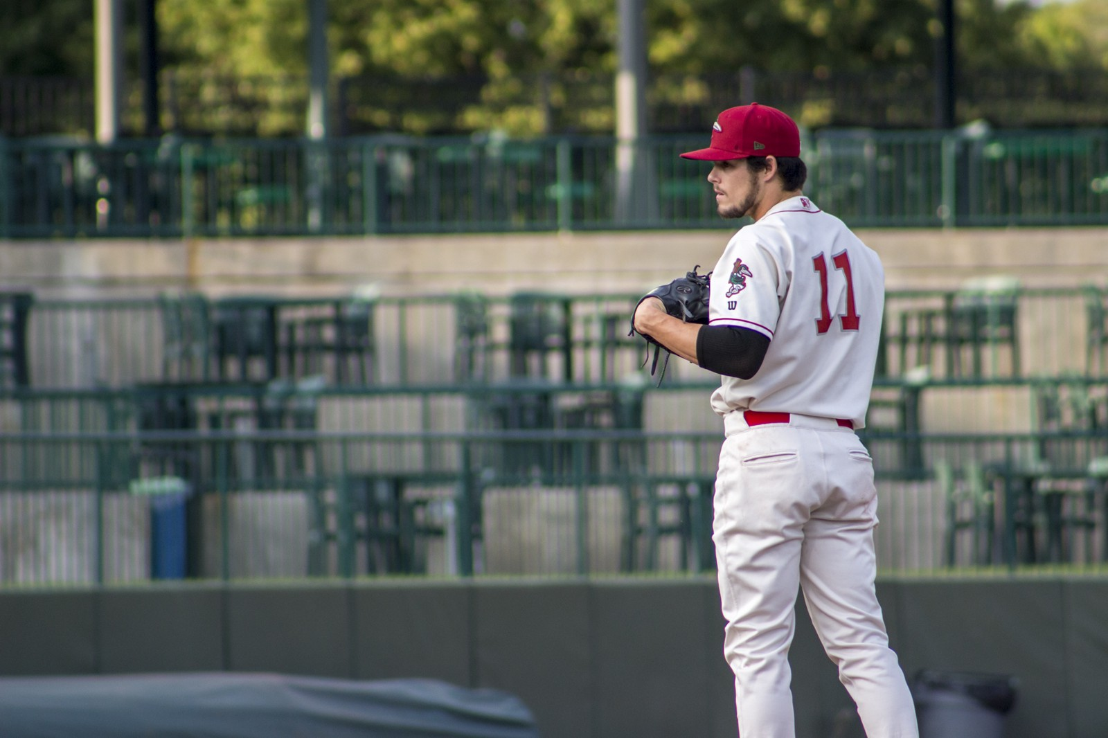 Riley Ottesen - Great Lakes Loons