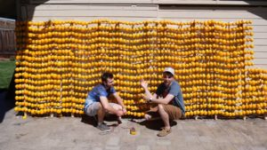 World's Largest Lemon Battery