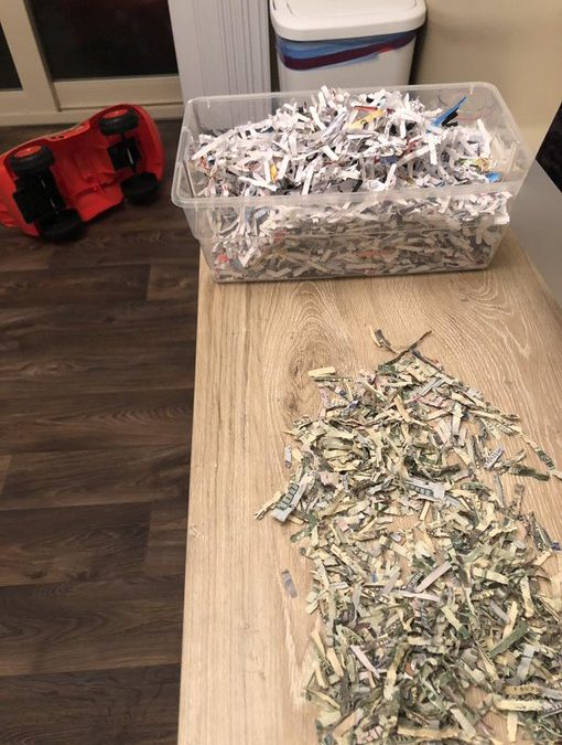 Two-Year-Old Toddler of LDS Couple Accidentally Shreds $1,060 of Family Cash